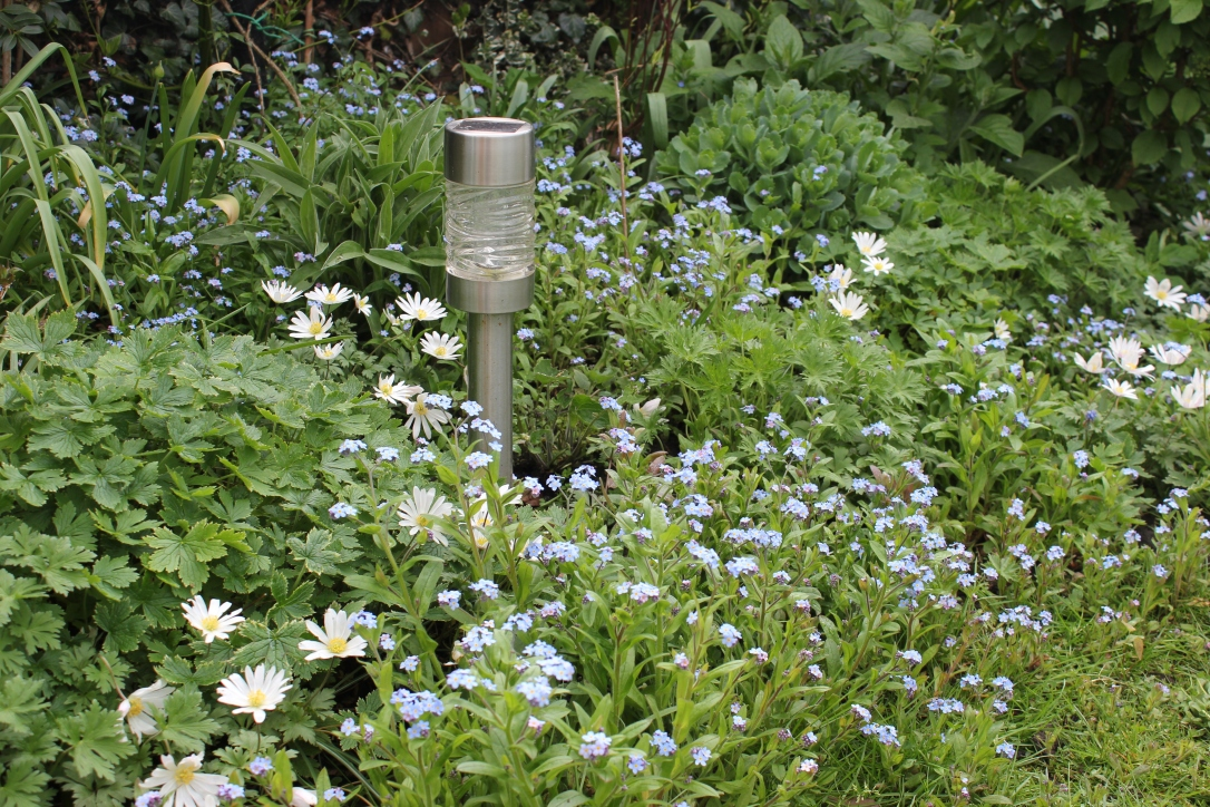 Spring garden border