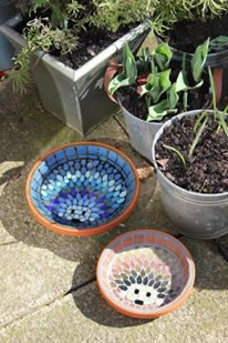 Two hedgehog bowls