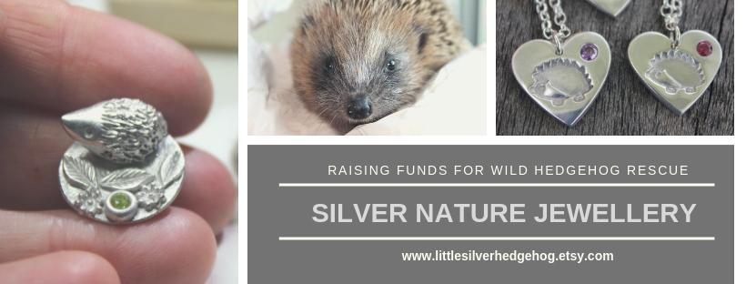 Little silver hedgehog facebook banner