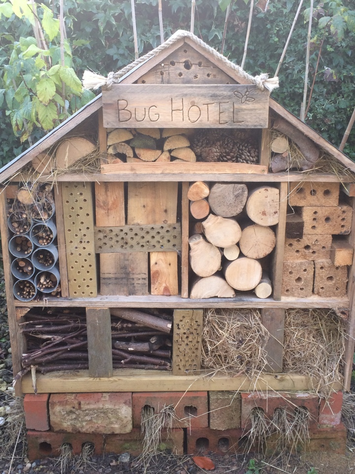 Insect hotel, bug house, wildlife hotel
