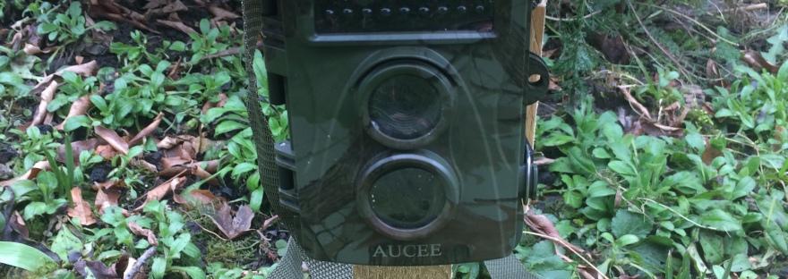 How to choose a wildlife trail camera, night camera