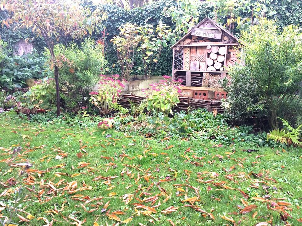 Autumn leaves wildlife garden insect hotel