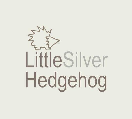 Little Silver Hedgehog