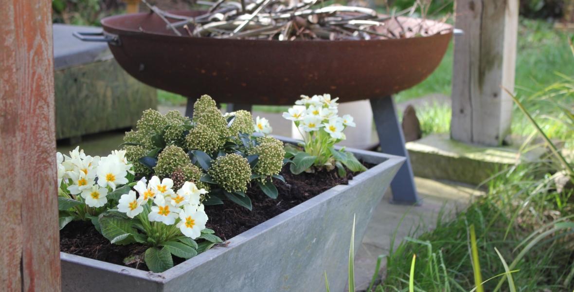 Spring garden bulb planter